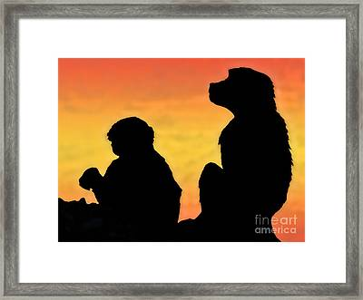 Taif Monkey Framed Print by Graham Taylor