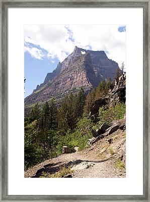 Tail In Glacier Framed Print by Marty Koch