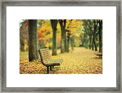 Take A Seat And Enjoy The View Framed Print by Photo by Glenn Waters in Japan