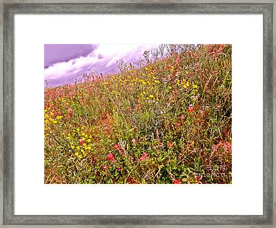 Take A Walk On The Wild Side Framed Print