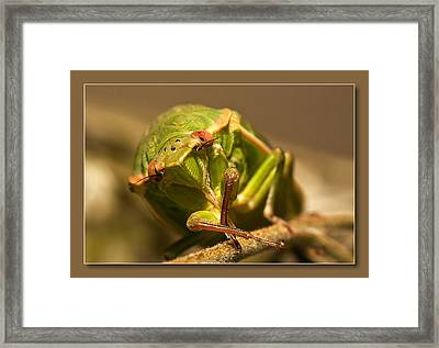 Framed Print featuring the digital art Take My Pic 01 by Kevin Chippindall