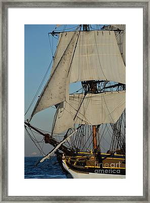 Tall Ship   Framed Print by Timothy OLeary