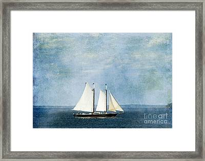 Framed Print featuring the photograph Tall Ship by Alana Ranney