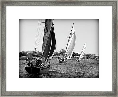 Framed Print featuring the photograph Tall Ship Races 2 by Pedro Cardona
