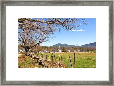 Tamworth Trees Spring Framed Print