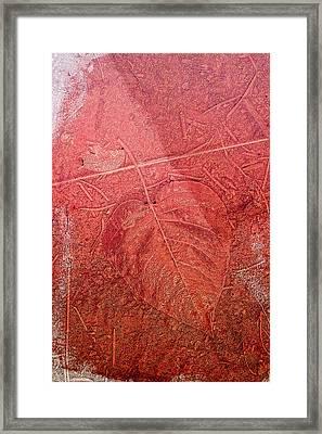 Tangerine Tango Heart Framed Print by Bonnie Bruno