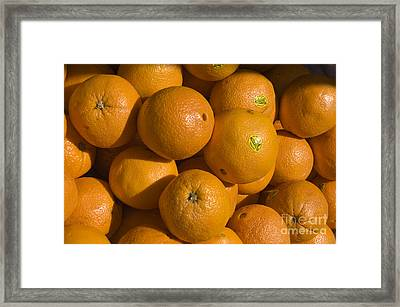 Tangerines Framed Print by Tim Mulina