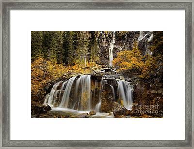 Tangle Falls, Jasper National Park Framed Print by Keith Kapple