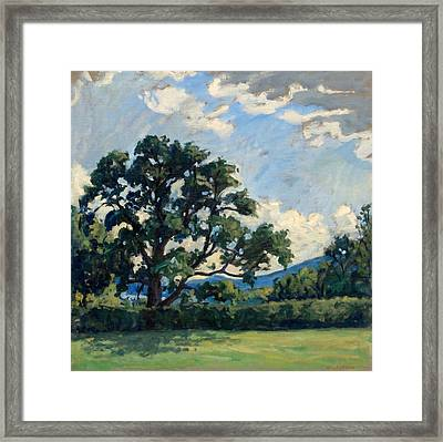 Tanglewood Afternoon Framed Print by Thor Wickstrom