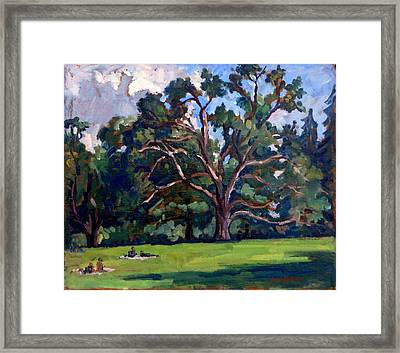 Tanglewood Saturday Framed Print by Thor Wickstrom