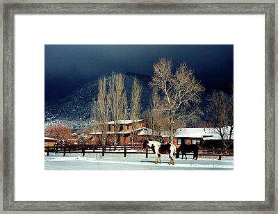 Taos Typical Framed Print by Ed Golden