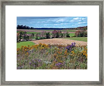 Framed Print featuring the photograph Tapestry by Christian Mattison