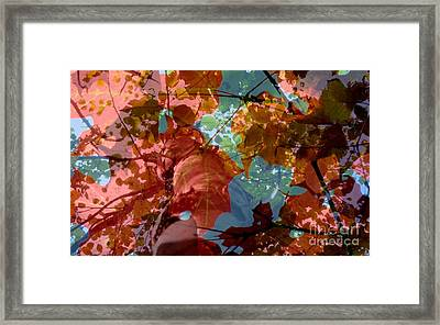 Framed Print featuring the photograph Tapestry Of Autumn 2 by France Laliberte