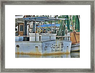 Tara D Framed Print