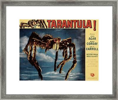Tarantula, 1955 Framed Print