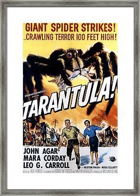 Tarantula, John Agar, Mara Corday, 1955 Framed Print