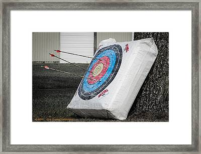 Target Nutralized Framed Print by Dan Crosby