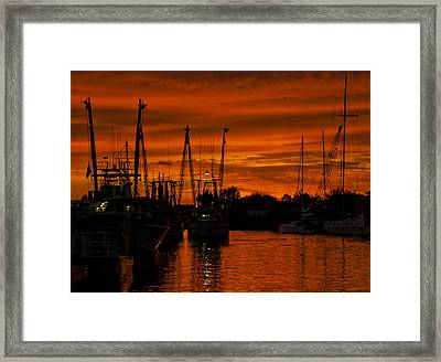 Tarpon Springs Framed Print