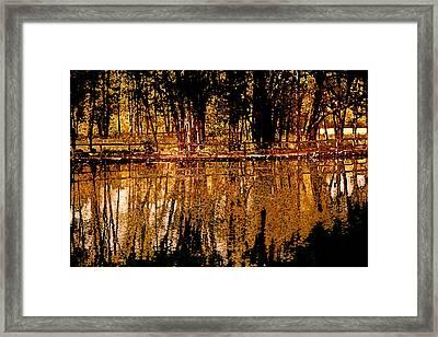 Taste Of Autumn Framed Print by Bonnie Bruno