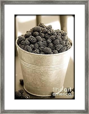 Tastes Great On The Oatmeal  Framed Print by Alana Ranney