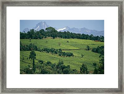 Tea Plantations Covering The Hills Framed Print by Michael S. Lewis