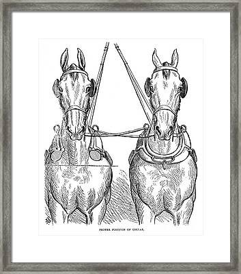Team Of Horses, 1875 Framed Print by Granger
