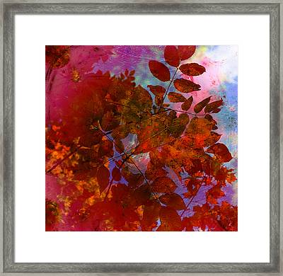 Tears Of Leaf  Framed Print by Jerry Cordeiro