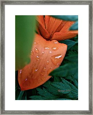 Tears Framed Print by Rotaunja