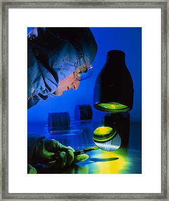 Technician Inspecting Silicon Wafers Framed Print by David Parkerseagate Microelectronics Ltd