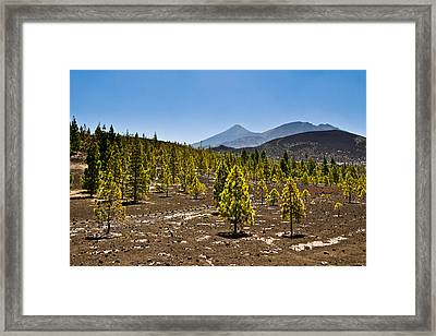 Technicolor Teide Framed Print