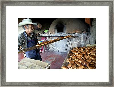 Teco Pan De Don Daniel Framed Print