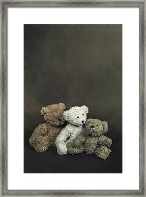 Teddy Bear Family Framed Print by Joana Kruse