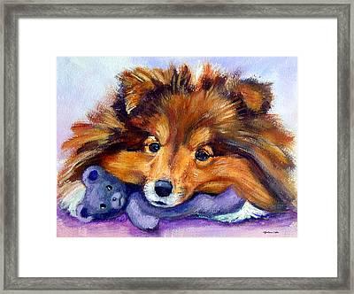 Teddy Bear Love - Shetland Sheepdog Framed Print by Lyn Cook