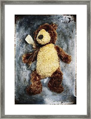 Teddy Bear Framed Print by Skip Nall