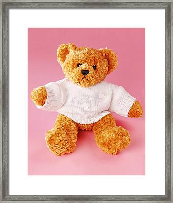 Teddy Bear Framed Print by Terry Mccormick