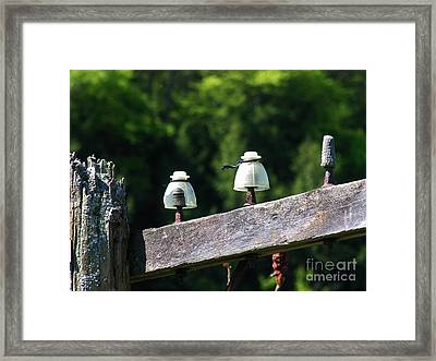 Framed Print featuring the photograph Telephone Pole And Insulators by Sherman Perry