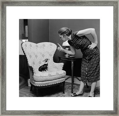 Telling Off Dog Framed Print by Three Lions