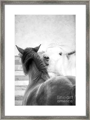 Telling Secrets In Black And White Framed Print