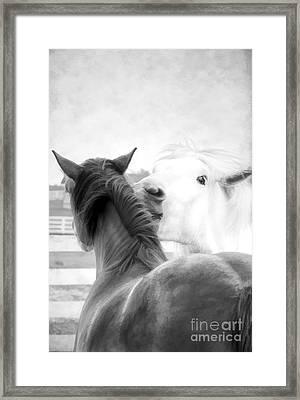Telling Secrets In Black And White Framed Print by Darren Fisher