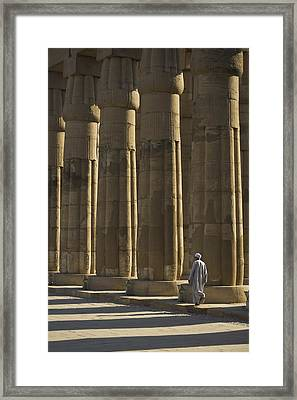 Temple Guard Walking Past Columns In Framed Print by Axiom Photographic