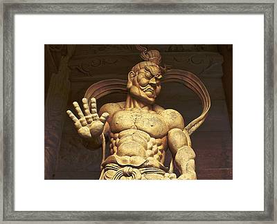 Framed Print featuring the photograph Temple Guardian 2 by Tim Ernst