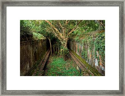 Temple Overgrown By The Jungle Framed Print by Artur Bogacki