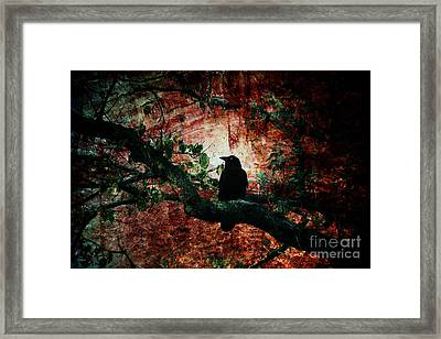 Tempting Fate Framed Print by Andrew Paranavitana