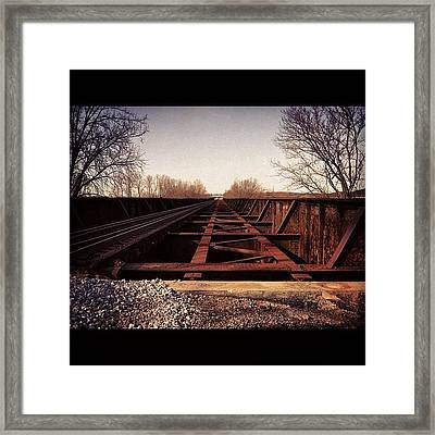 Tempting To Run Across  Framed Print by  Abril Andrade Griffith