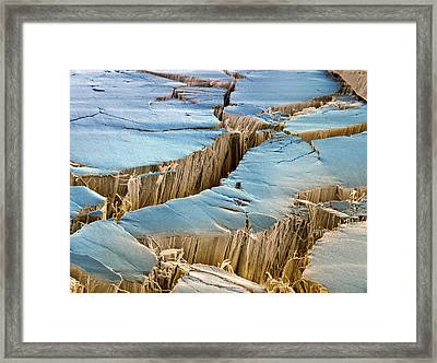 Tendon, Sem Framed Print by Steve Gschmeissner