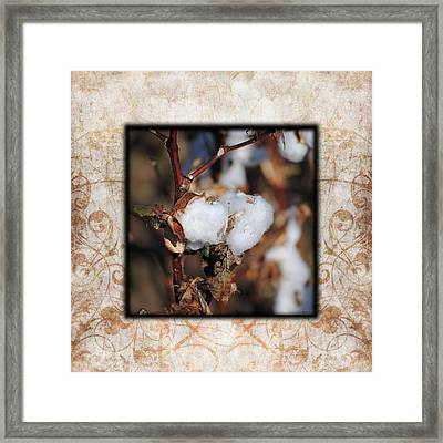 Tennessee Cotton I Photo Square Framed Print by Jai Johnson