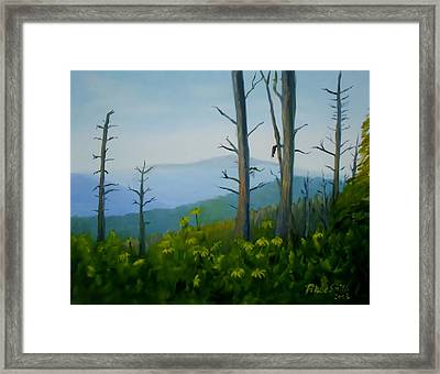 Tennessee Mts. Framed Print by Phebe Smith