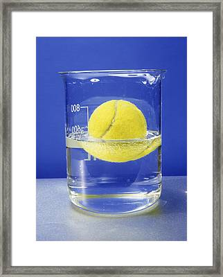 Tennis Ball Floating In Water Framed Print by Andrew Lambert Photography