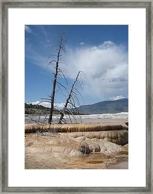 Terrace Framed Print by Wade Aiken