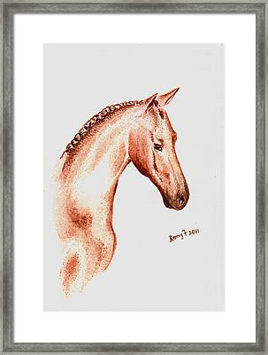 Terracota Bronco Framed Print by Remy Francis